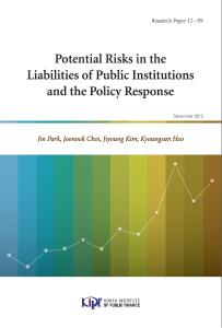 Potential Risks in the Liability of Public Institutions and the Policy Response cover image
